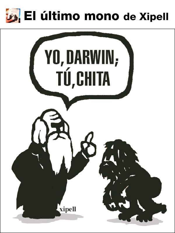 darwin-chita-contraportada